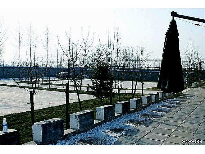 北京宠物寄养价格20元/天单圈寄养户外运动6小时