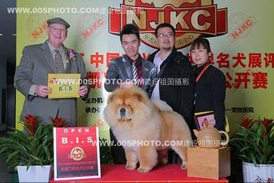 09年3月13日14日佛爷获宜兴NJKC两场全场总冠军BIS图片