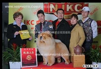 09年3月13日14日佛爷获宜兴NJKC两场全场总冠军BIS