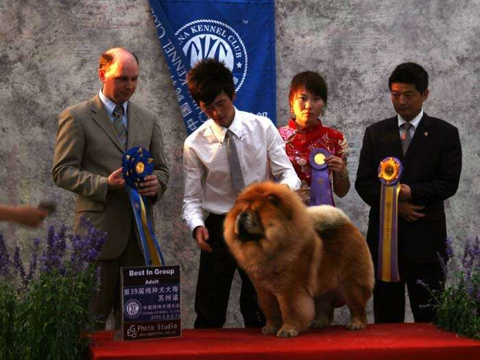 09.5.10第三届苏州国际名犬展战神获全场总冠军BIS