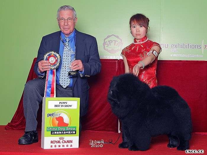 2010年3月13日-14日中国犬赛黑金获全场总冠军BIS图片