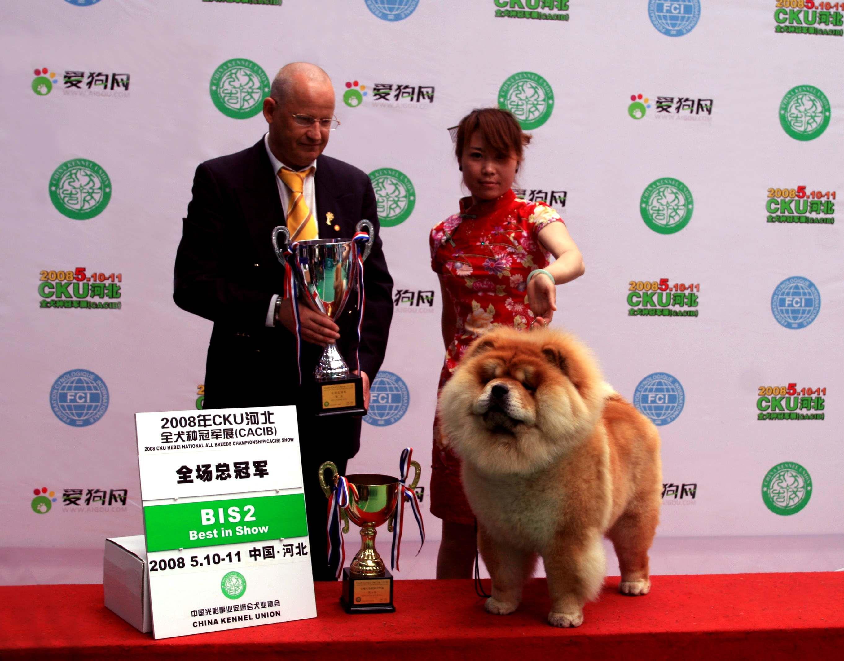 HOPE获石家庄FCI国际冠军展全场总冠军图片