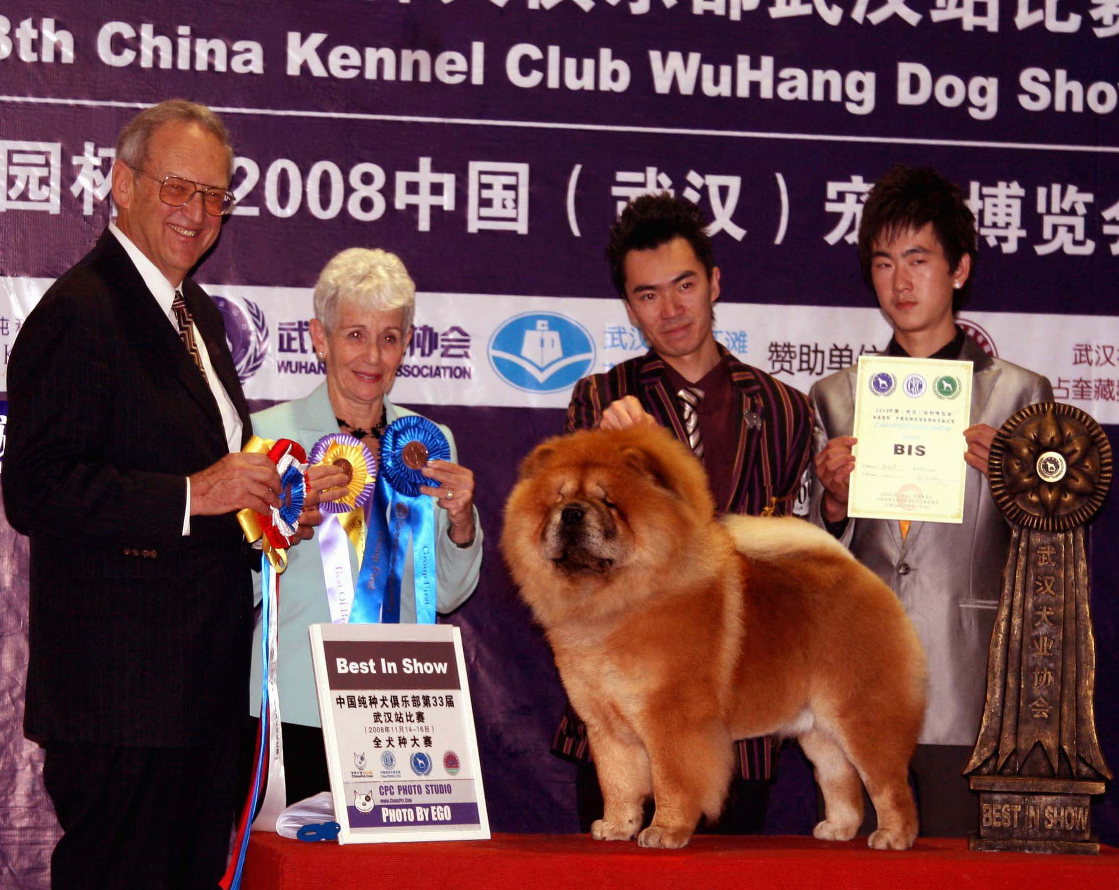 小现金获第33届CKC武汉站比赛全场总冠军图片