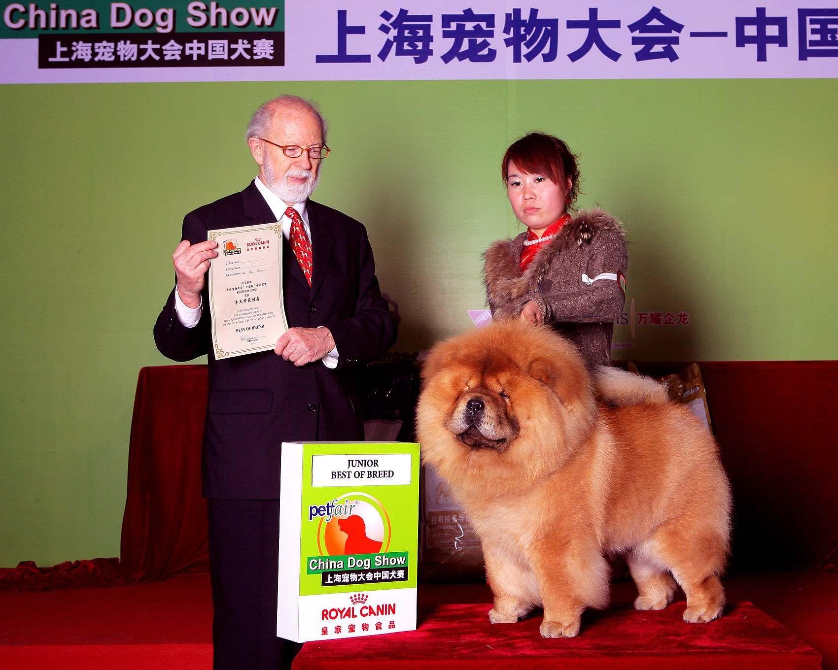 2010年3月13日上海宠物大会战神获非运动组冠军图片