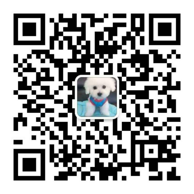 云南买狗卖狗专业养犬场常年出售哈士奇小狗图片